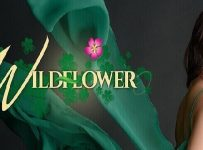 WildFlower February 1, 2018 Pinoy Channel
